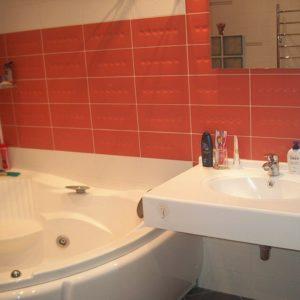 пр1-ванная1